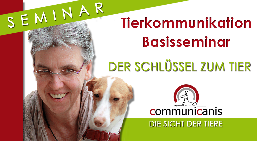 Basisseminar Tierkommunikation