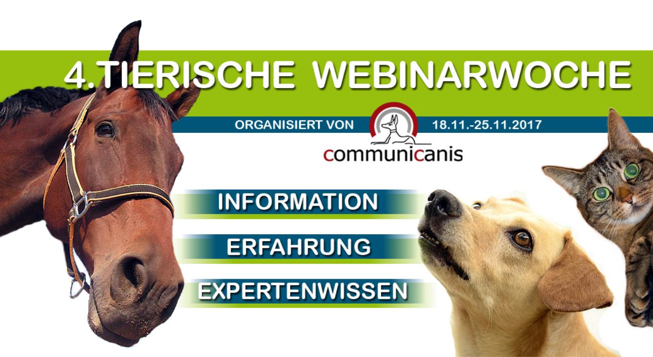 Tierische Webinarwoche von communicanis